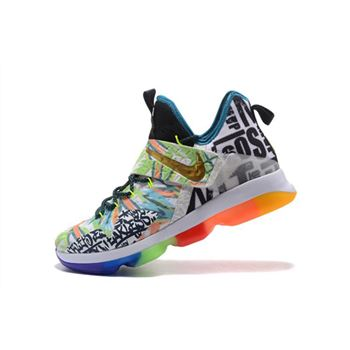 Nike LeBron 14 Colorful Men's Basketball Shoes Free Shipping
